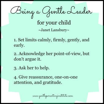 being-a-gentle-leader